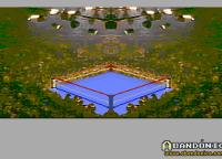 El ring, antes de comenzar la pelea. Tranquilamente podría ser el Luna Park, no?