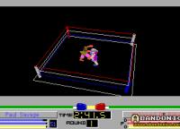 El juego te permite distintas vistas del cuadrilátero durante la pela, usando las teclas de función (F1, F2, etc.)