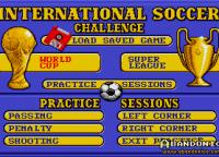 Los tres modos de juego: Copa del Mundo, Liga y Práctica (arriba de todo para cargar un juego previamente guardado)